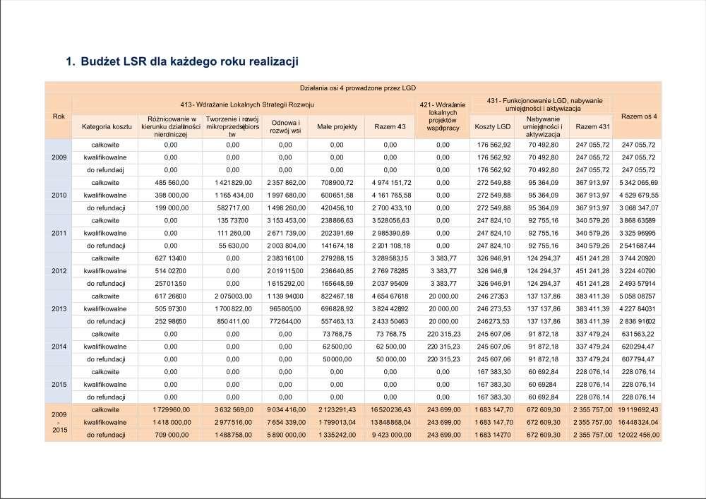 LSR - budżet.jpg